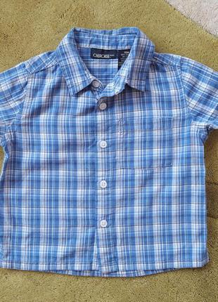 Рубашка cherokee