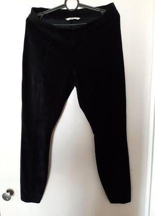 Велюровые брюки,лосиеы,леггинсы