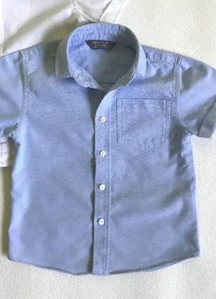 Рубашка primark, по бирке 1,5-2 года, рост 92 см.