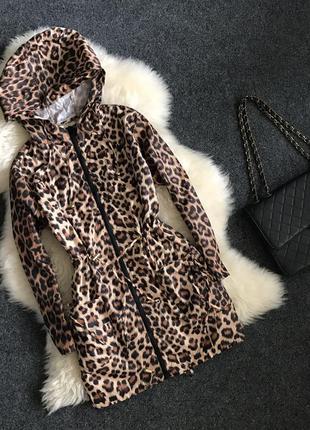 Леопардовый дождевик