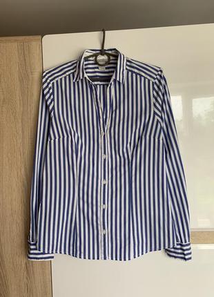 Сорочка, рубашка, блуза, блузка