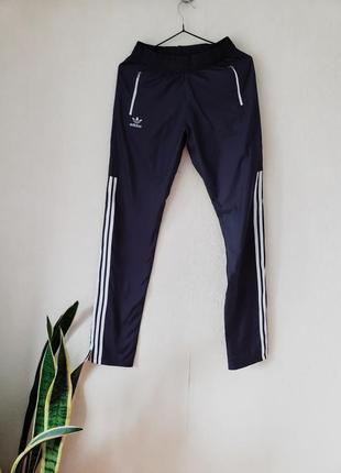 Новые зауженные штанишки с лампасами на высокий рост