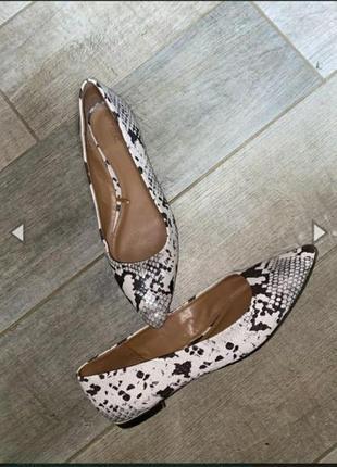 Балетки   туфли змеинный принт на низком ходу