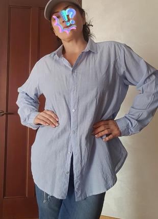 Базовая рубашка блуза оверсайз хлопок 100%