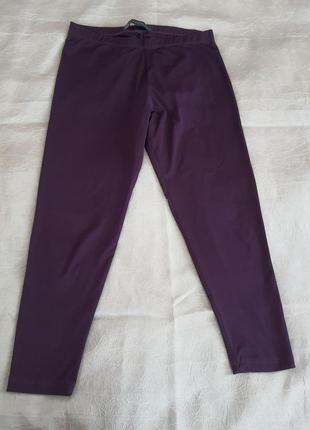 Темно-фиолетовые бриджи, 40 размер