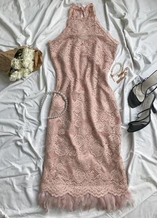 Ніжна мережевна сукня із пір'ям