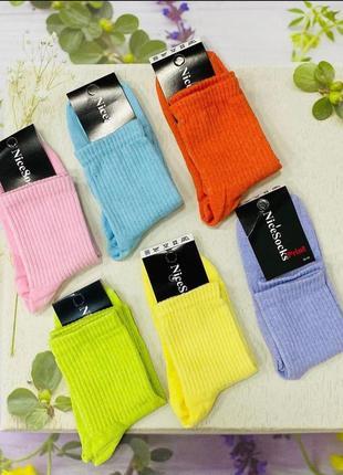 Жіночі шкарпетки 🎀