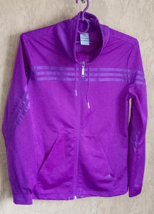 Олимпийка фиолетовая adidas