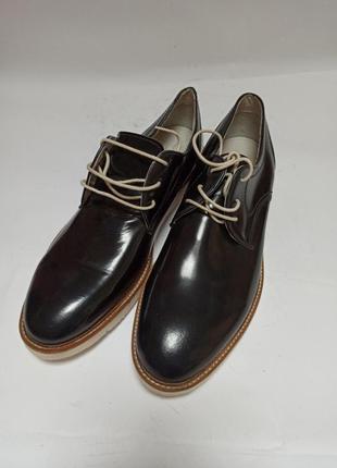 Туфли zign.брендове взуття stock2 фото