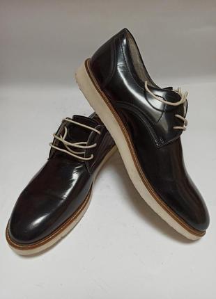 Туфли zign.брендове взуття stock3 фото