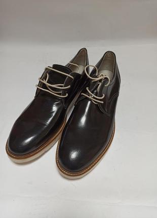 Туфли zign.брендове взуття stock