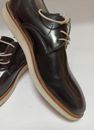 Туфли zign.брендове взуття stock6 фото
