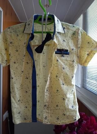 Яркая и нарядная рубашка