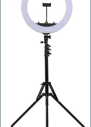 Кольцевая лампа 30см со штативом 2м