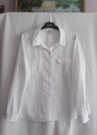 Красивая хлопковая рубашка