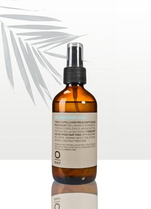 Увлажняющий фитопротеин для волос oway phytoprotein mist 160мл