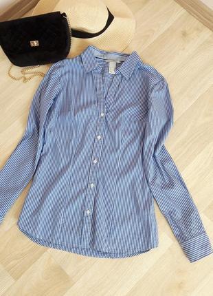 Базовая стретчевая рубашка классика прямая полоска приталенная белый синий h&m bershka levi's hilfiger zara