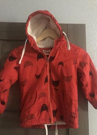 Ветровка , демисезонная куртка