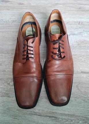 Туфли мужские классические pierre cardin чоловічі туфлі класичні шкіряні