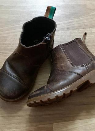 Кожаные ботинки clarks 5,5 р