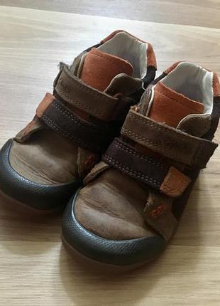 Кожаные ботинки clarks 6 р