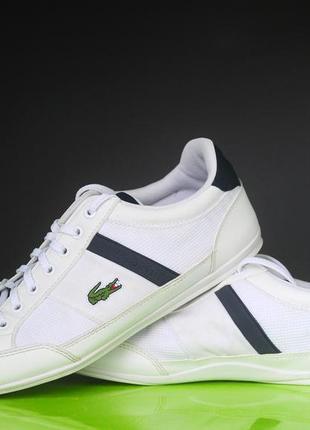 Білі кросівки lacoste оригінал6 фото