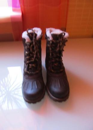 Модные женские ботинки timberland