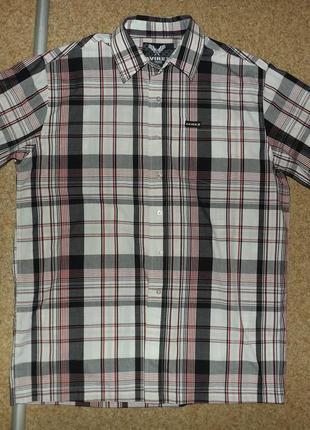 Рубашка avirex