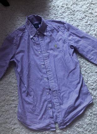 Рубашка ralph lauren  в фиолетовую полоску