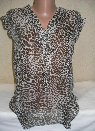 Шифоновая блузка большой размер