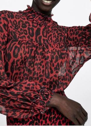 Леопардовая шифоновая блуза zara с пышными рукавами
