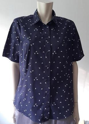 🌺🦜🦋 милая рубашка / блузка с птичками