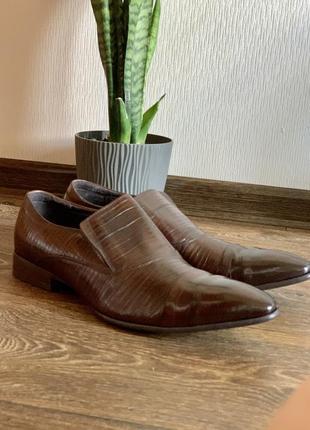 Кожаные туфли everest