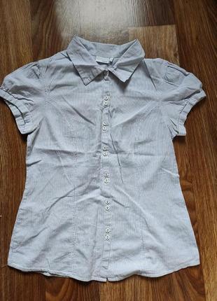 Блуза в полоску next