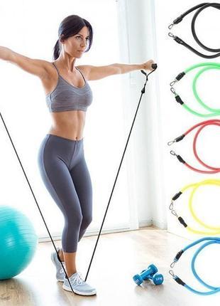 Набор эспандеров с петлями pro supra power bands 5 жгутов трубчатых эспандеров для фитнеса