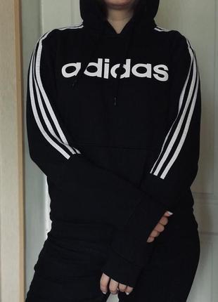 Толстовка (худи)  adidas