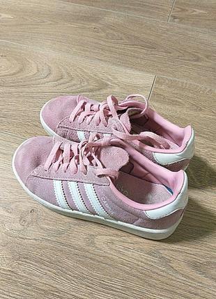 Adidas campus кросівки