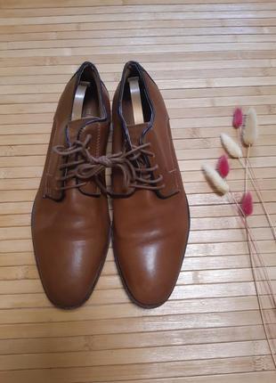 Туфлі класичні minelli