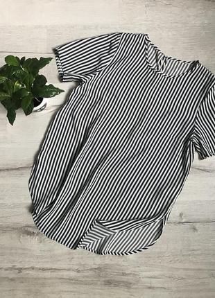 Женская блузка в полоску с коротким рукавом h&m