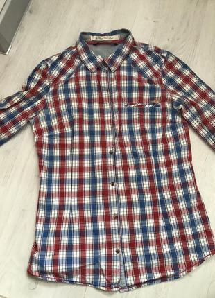 Zara s xs рубашка женская в клетку белая синяя красная