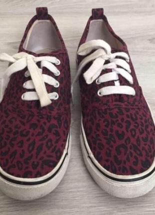 Кеды леопардовые женские h&m бордовые р.372 фото