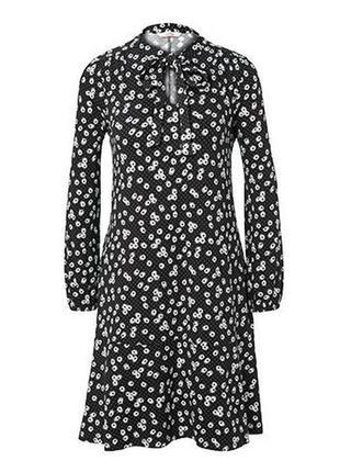 Модные вещи для пышных элегантное платье в ромашковом дизайне от tchibo(германия)
