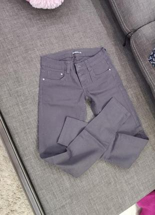 Terranova штаны xs