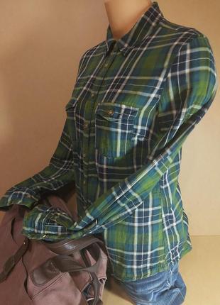 Рубашка в клетку h&m. женская хлопковая зеленая рубашка h&m в клетку
