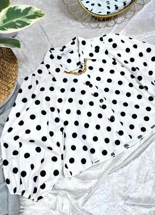 Рубашка блуза zara в горох с пукавами бафами