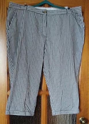 Летние хлопковые бриджи, длинные шорты  большого размера, супер-батал  р. 24/62