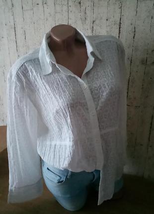 Базовая блуза рубашка 16р