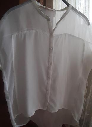 Шифоновая блуза bershka