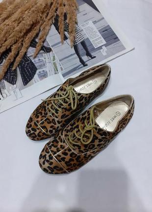 Туфли, мокасины