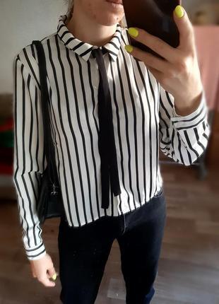 Укороченная полосатая рубашка